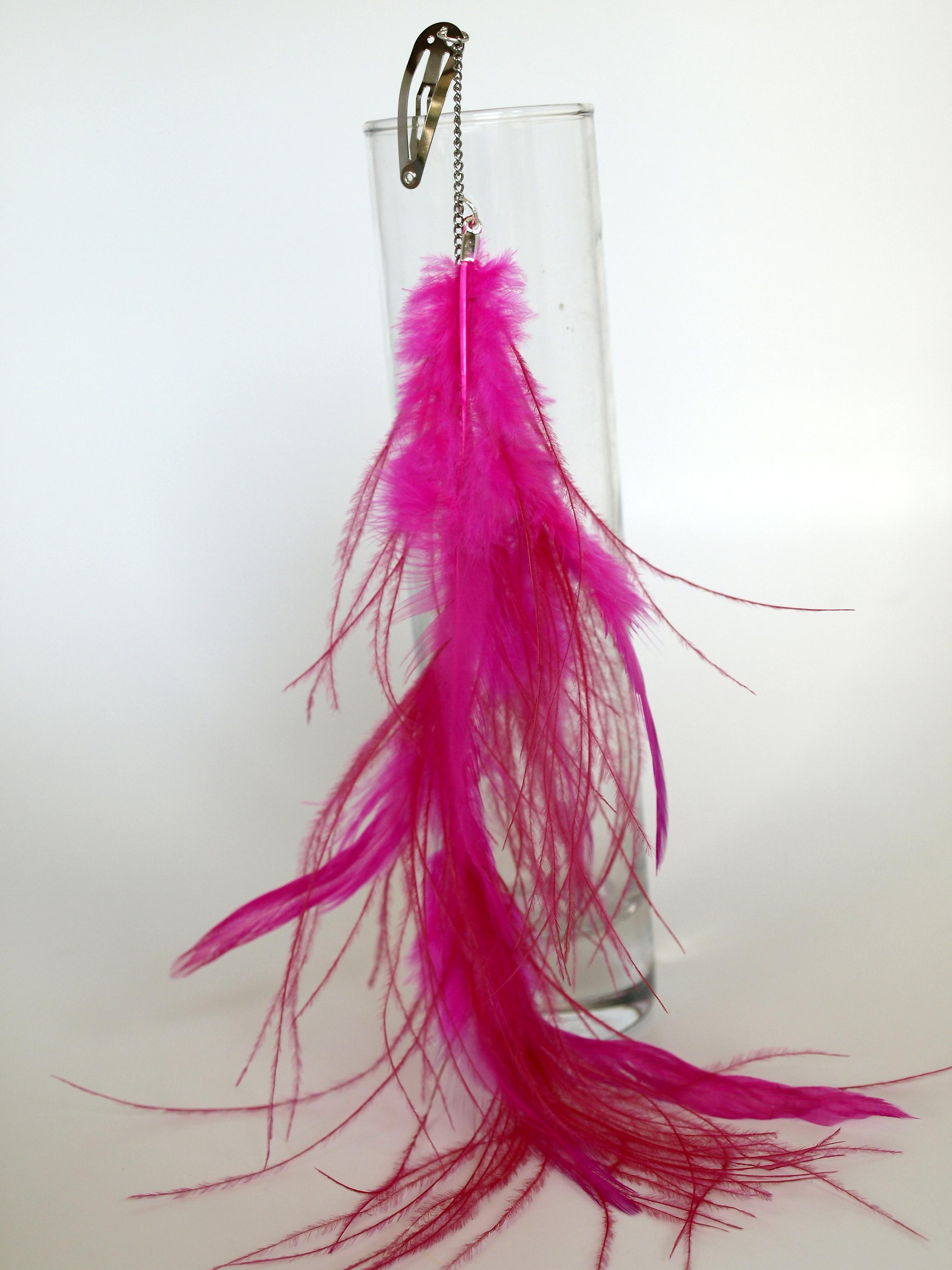 Feather Hair Clip Diy Seecatecreate